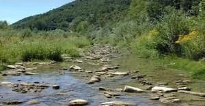 valle belbo