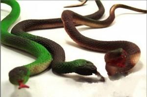 serpente giocattolo