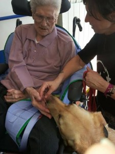 pet theraphy