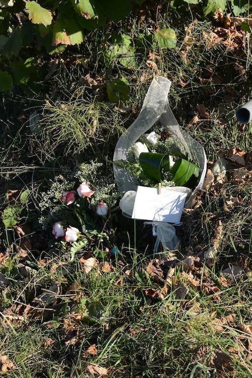 Morte di Elena Ceste. Nove mesi di indagini e ricerche: la fotogallery