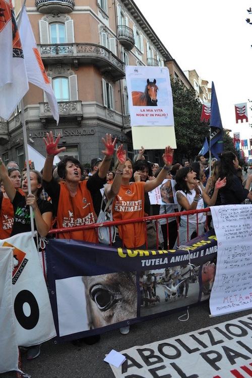 Palio di Asti 2015. Animalisti in piazza per dire no alla corsa