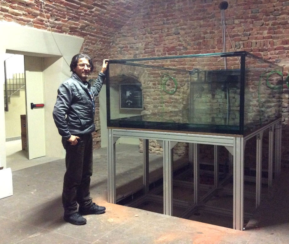 Al Museo dei Fossili l'anno nuovo porterà l'acquario preistorico