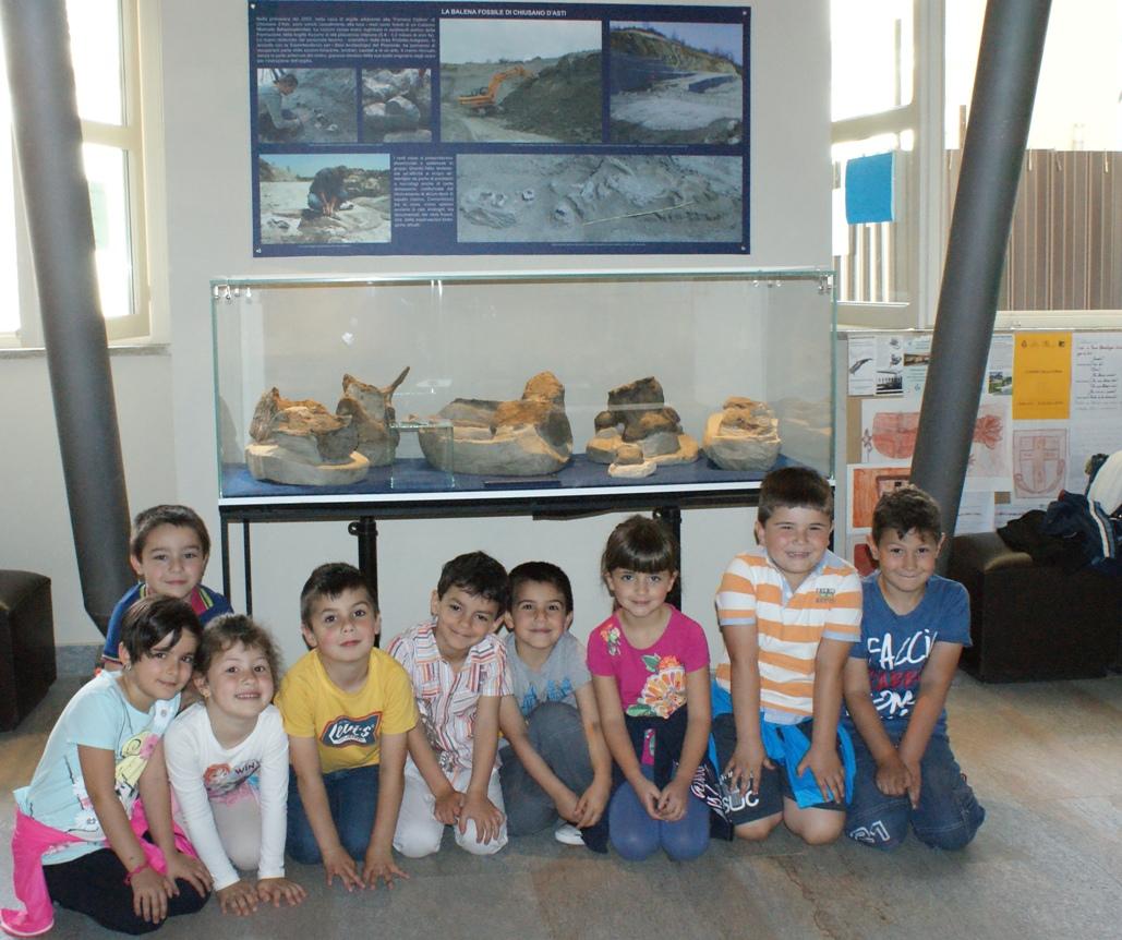 Chiusano rende omaggio al grande cetaceo scoperto nel 2003