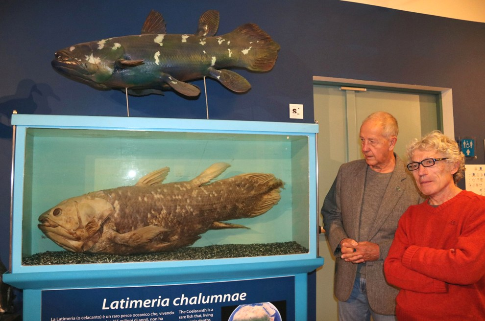 Trieste invita Asti per i 35 anni di esposizione del celacanto, rarissimo pesce delle Comore