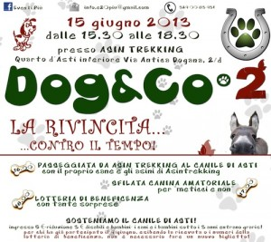 """Dog & Co2"": nuovo appuntamento in favore del canile di Asti"