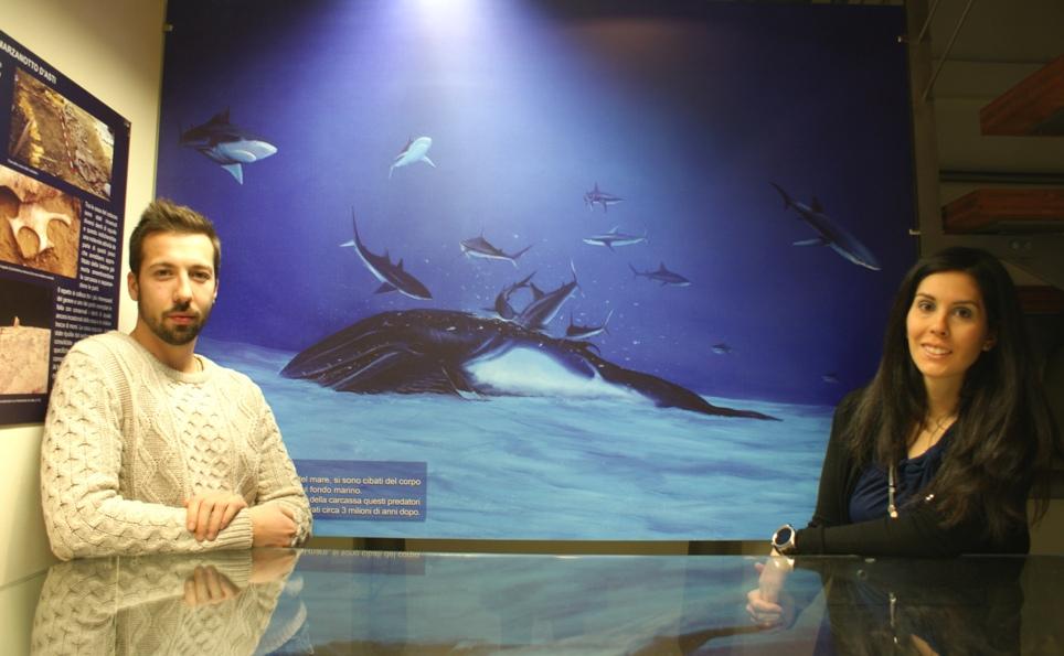 Si aprono le porte del nuovo Museo Paleontologico