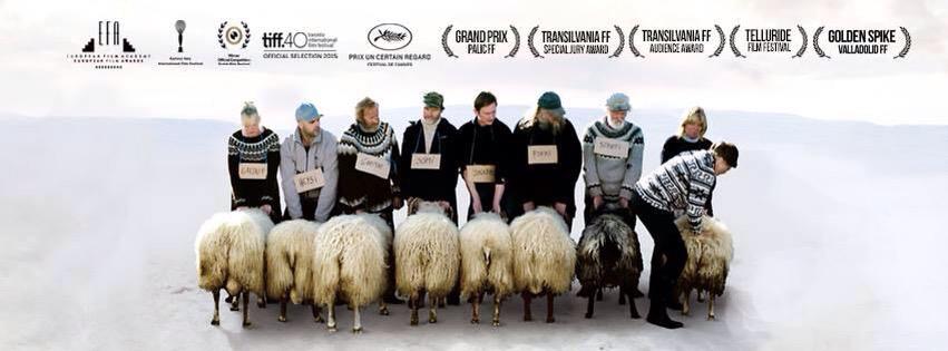 Il film islandese Rams in Sala Pastrone