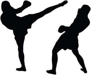 Ad Asti i campionati interregionali di kick boxing