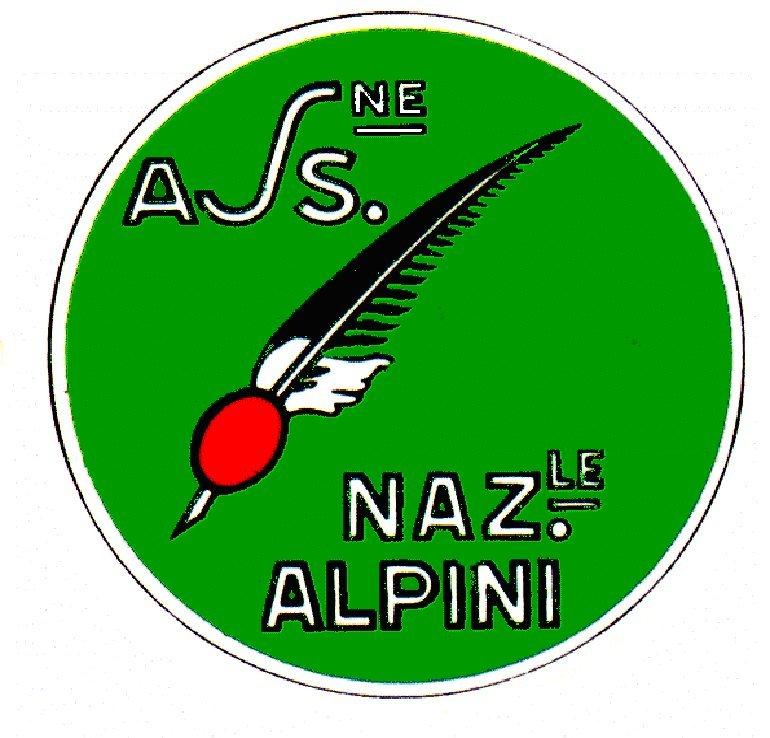 San Martino Alfieri, 25° Festa provinciale degli Alpini