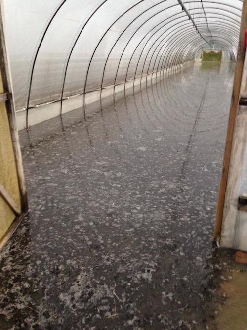 Approvata in sede legislativa una legge a sostegno delle imprese che hanno subito danni da calamità naturali