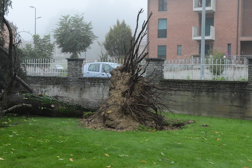 Maltempo: il Piemonte chiede lo stato di calamità
