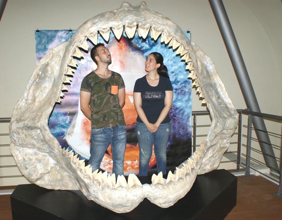 Asti: san Valentino al Museo dei fossili