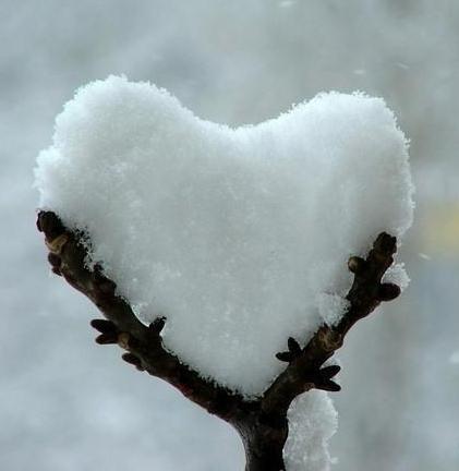 La prima neve su Torino