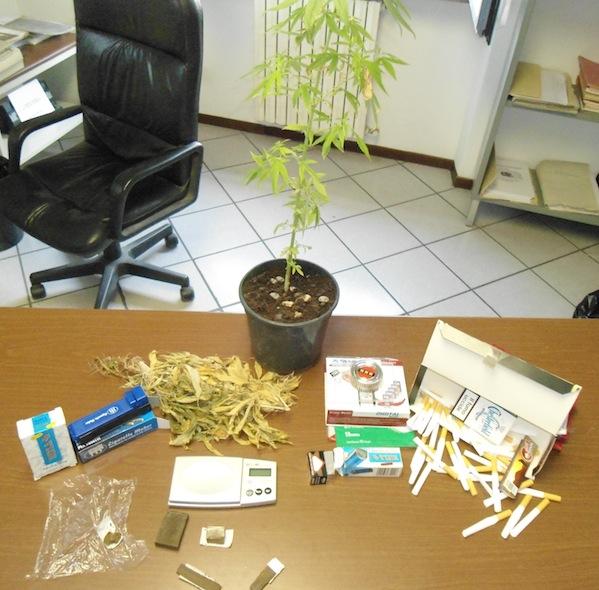 Coltiva marijuana in casa: arrestato dai carabinieri di Nizza Monferrato
