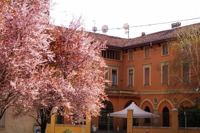 """Presentazione di """"Un Cuore Bianco"""" al Centro San Secondo"""