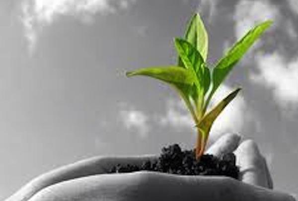 Ad Asti si studia l'agricoltura biodinamica