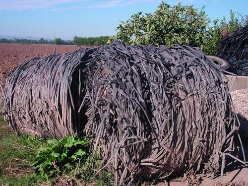 Con Cascina Pulita vantaggi per agricoltori e imprese per lo smaltimento delle ali gocciolanti