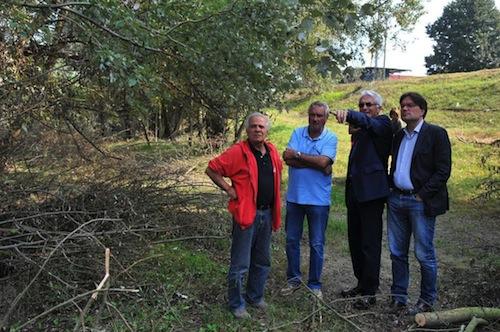 Tagliati gli alberi lungo la sponda destra del Tanaro