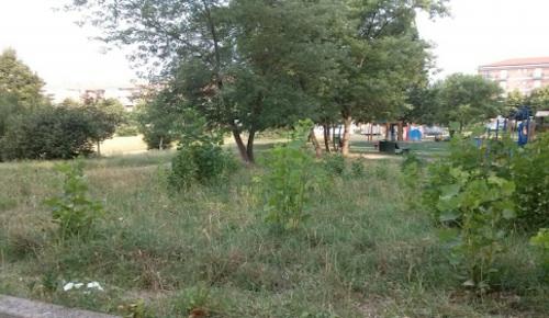 Anche ad Asti il baratto amministrativo: la proposta del Movimento 5 Stelle