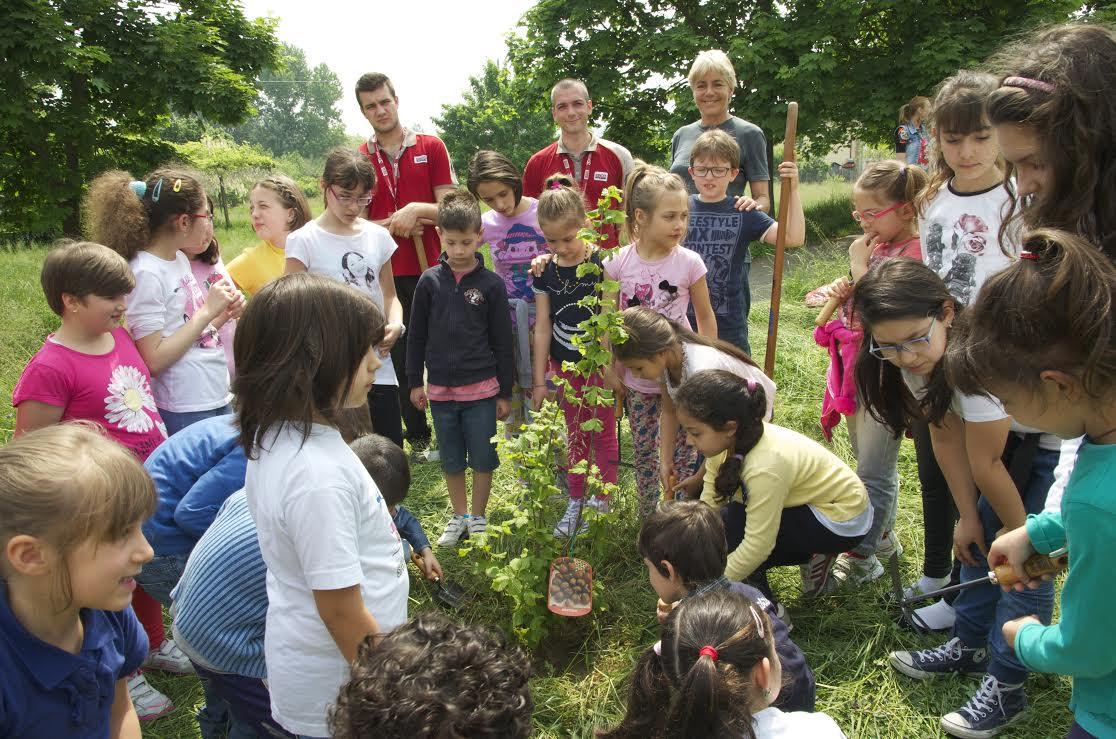 Verde a scuola: il Consiglio dei Ragazzi chiama e Brico risponde