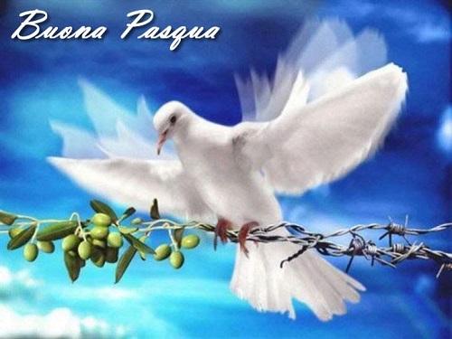 Auguri di buona Pasqua nel segno della speranza