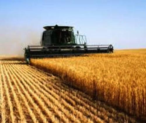 Approvato dalla Camera un ordine del giorno del deputato Fiorio sull'Imu agricola