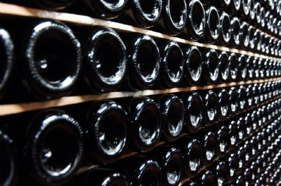 Decreto ristori anche per l'agricoltura: ecco cosa ne pensano i vitivinicoltori