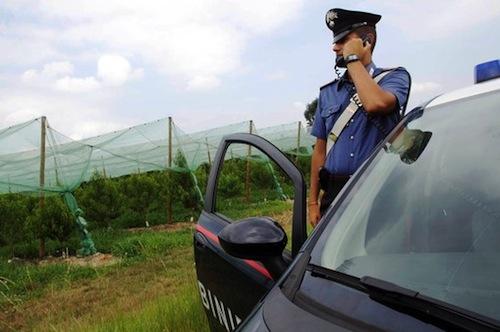 Giovane agricoltore vittima di un incidente in campagna
