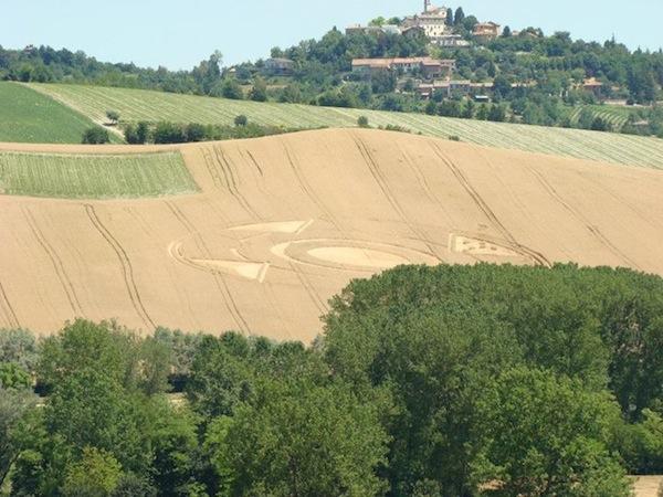 Crop circles a Robella: processione di turisti