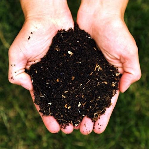"""Gli odori dell'impianto di compostaggio di Gaia non sono """"intollerabili"""": una sentenza respinge le lamentele degli abitanti"""