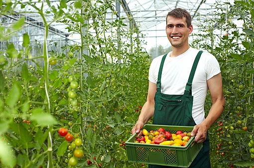 Aumentano le aziende agricole che propongono la spesa a domicilio