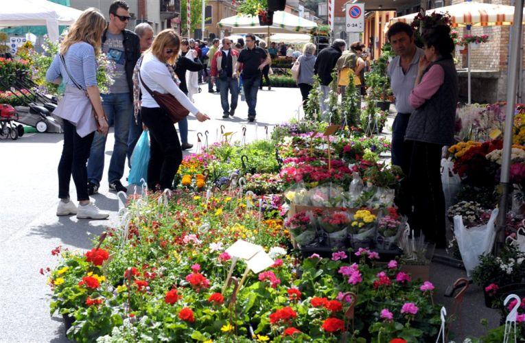 Le immagini del mercato dei fiori di Motta