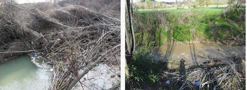 Interventi in alveo per sgomberare i corsi d'acqua
