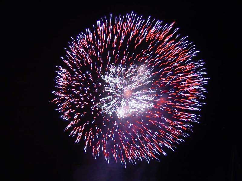 """Paola Re: """"Gli amministratori dispongano il divieto di fuochi d'artificio e mortaretti"""""""