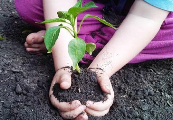 Nel 2015 incremento di rifiuti per tutti gli impianti di Gaia