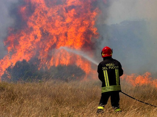 Incendio in un bosco di località Valfea