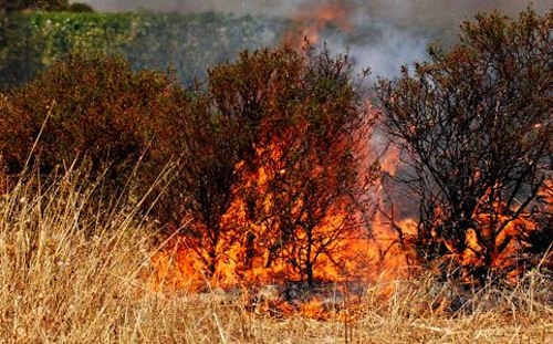 Piemonte: ancora  in vigore lo stato di massima pericolosità incendi boschivi