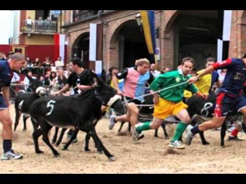 Domani il Palio degli asini a Cocconato d'Asti