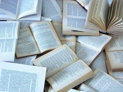 Mille libri per la biblioteca: deliberato dal Comune un contributo straordinario per arricchire la dotazione della struttura intitolata a Giorgio Faletti