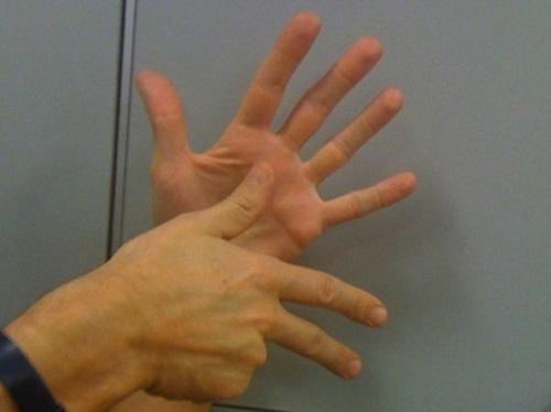 Al Centro Culturale le fiabe nella lingua dei segni