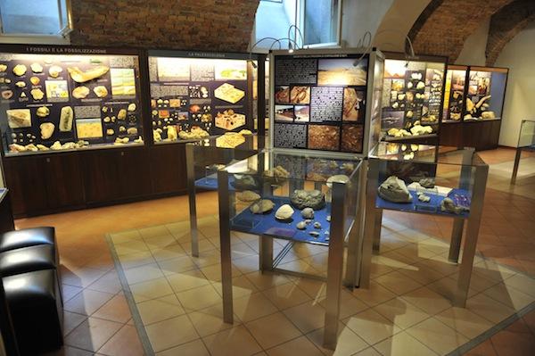 Pasquetta la Museo Paleontologico
