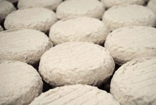 Da Coldiretti Asti e Inipa Nord Ovest un corso su come affinare le tecniche di allevamento e produrre formaggi