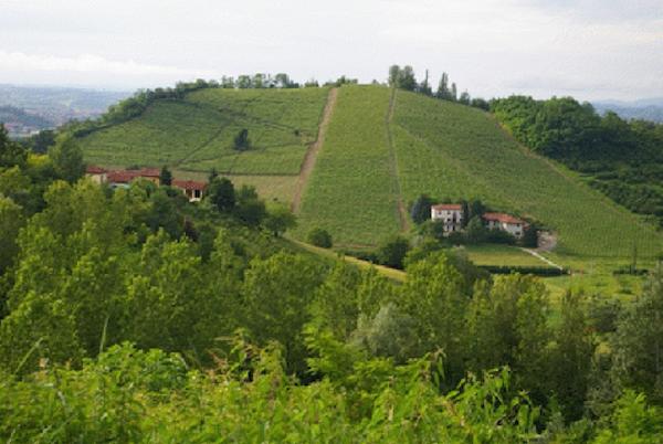 Dichiarazione di notevole interesse pubblico del paesaggio di San Marzanotto