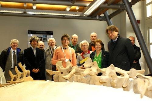 La Viglianottera, richiamo di punta del nuovo Museo Palentologico, si svela a poco a poco