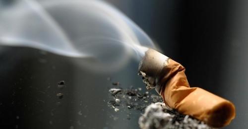 Fumo passivo, anche gli animali domestici sono a rischio