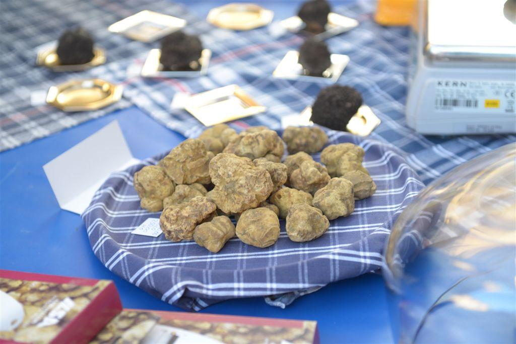 Asti, i mille profumi del tartufo e del Monferrato in mostra nei Palazzi Storici