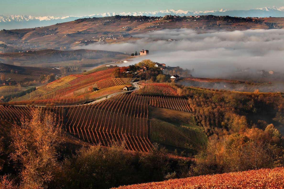 """Primo anniversario dell'iscrizione de """"I Paesaggi Vitivinicoli del Piemonte"""" nella lista del Patrimonio Mondiale Unesco"""