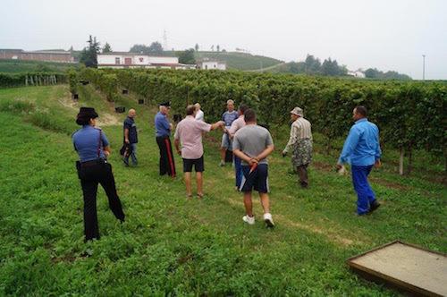 Controlli dei carabinieri nelle vigne per contrastare il caporalato