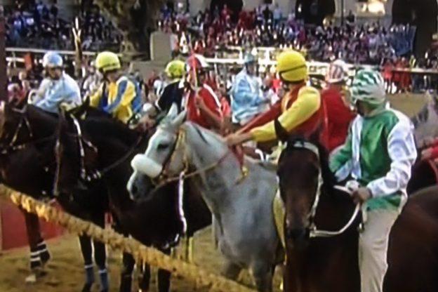 Palio di Asti. Cavalli al canapo per la finale