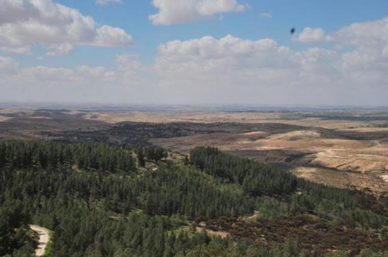A Gerusalemme un bosco per onorare la memoria dei magistrati italiani